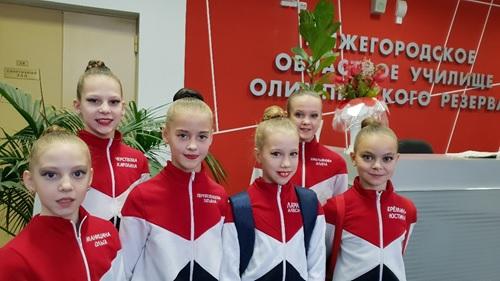 первенство Нижегородской области по художественной гимнастике.